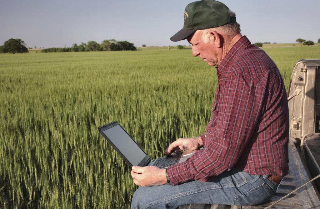 Ульяновские фермеры запустили в тестовом режиме интернет-магазин в условиях пандемии